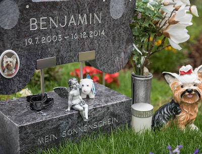 Grab am Tierfriedhof Wien